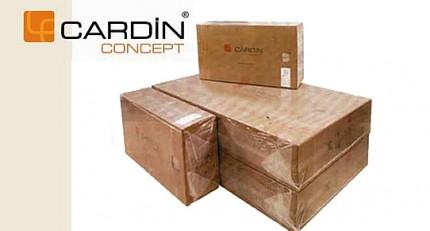 cardin_concept.jpg